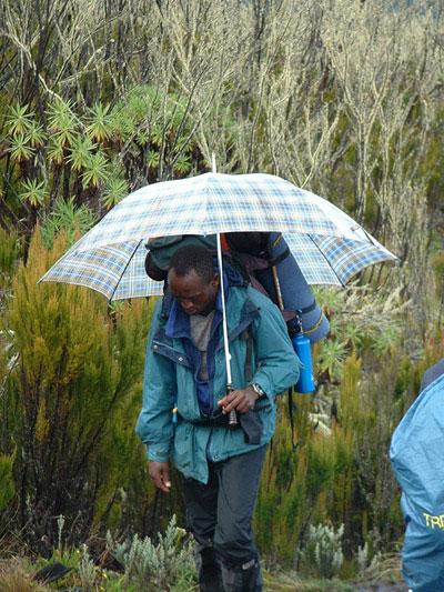 Guía en el Kilimanjaro con paraguas